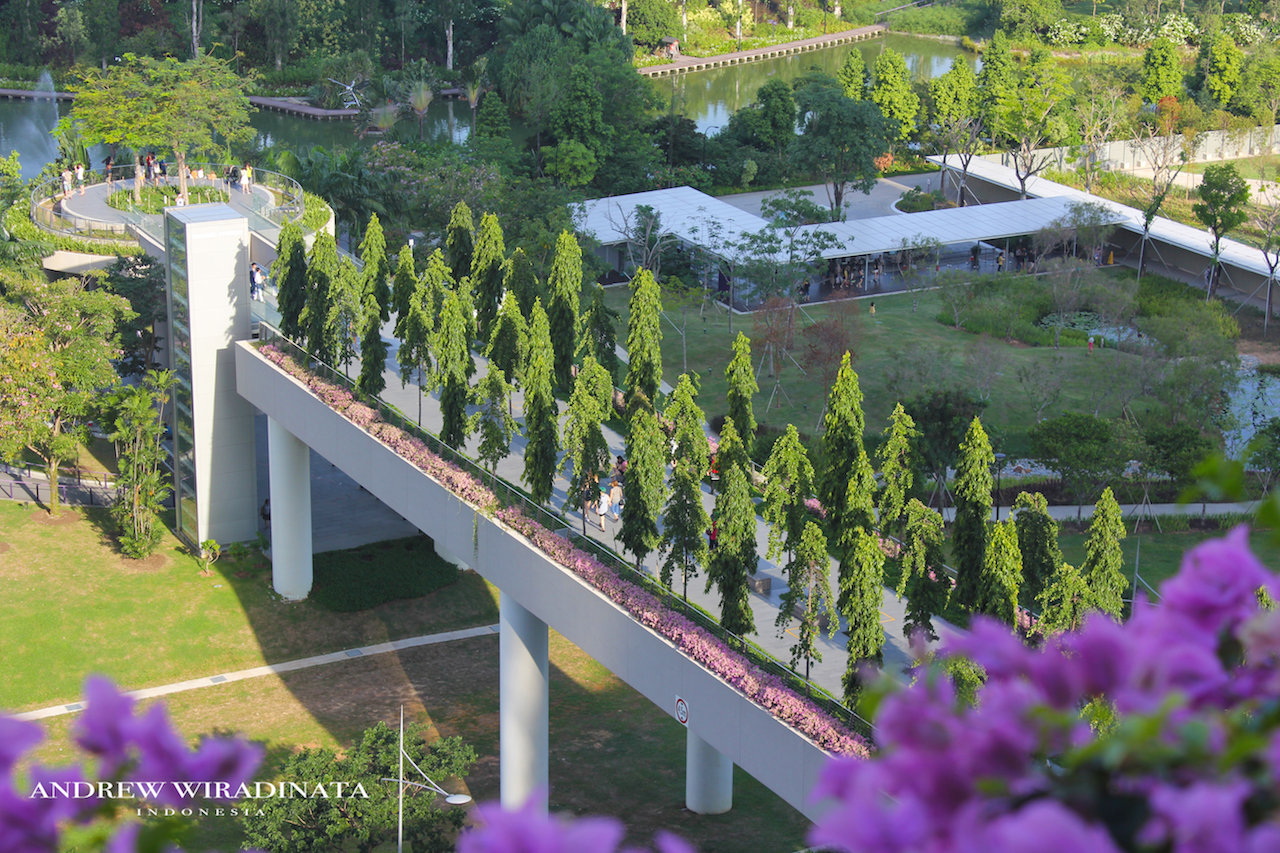 Garden By The Bay Annual Pass exellent gardenthe bay flower show a height of 22 metres and